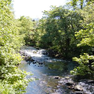 Hotel Pictures: River Cottage, Keswick