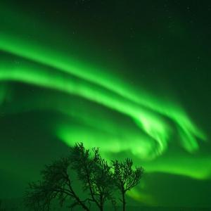 Hotel Pictures: Artic Aurora Borealis Cottages, Nuorgam