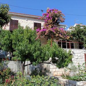 Fotografie hotelů: Apartment Postira 5659b, Postira