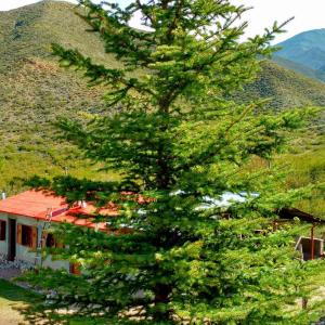 Hotel Pictures: Cabañas Montaña Paraiso, Potrerillos