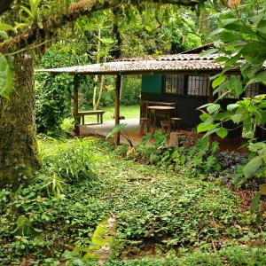 Hotel Pictures: Birder's Rainforest Retreat, Quizarrá