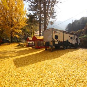 Zdjęcia hotelu: Lake Resort, Gapyeong