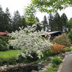 Hotelbilleder: Idyllische Ferienhäuser am Waldrand, Fichtelberg