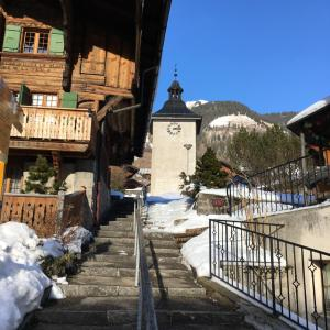 Hotel Pictures: Résidence Le Tambour, Rossinière