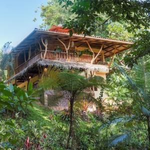 Hotelfoto's: Canopy, Punta Uva