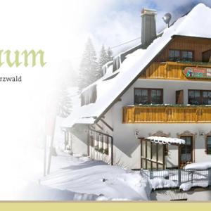 Hotelbilleder: Hotel Höhengasthof Grüner Baum, Feldberg in Mecklenburg