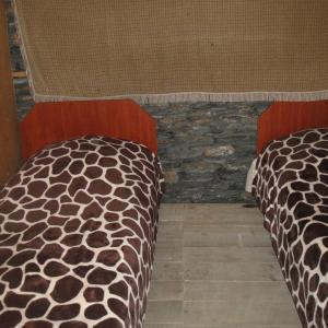 Hotellikuvia: Guest House Everest, Tusheti