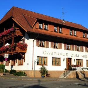Hotelbilleder: Hotel Gasthaus Zum Hirschen, Simonswald