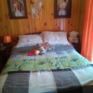 Фотографии отеля: AIRES DE MAR, Laguna Verde