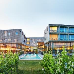 Hotelbilleder: LOISIUM Wine & Spa Resort Langenlois, Langenlois