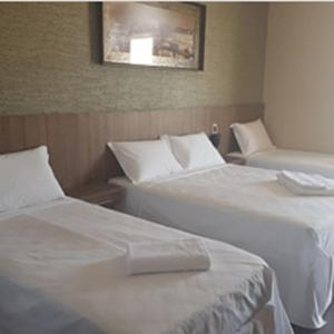 Hotel Pictures: Hotel Santo Sono Junqueirópolis, Dracena