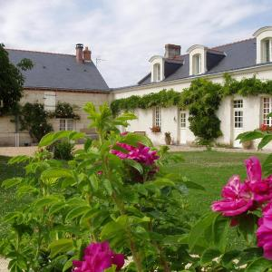 Hotel Pictures: La Jarillais, Saumur