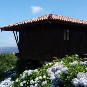 Hotel Pictures: Panera de Santa Olaya, Pravia