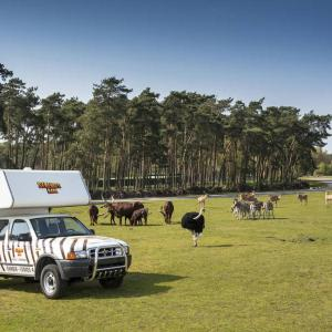 Hotel Pictures: Ranger Lodges im Serengeti Park, Hodenhagen