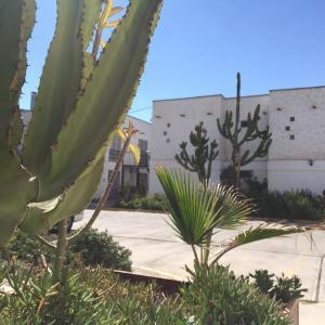 Hotel Pictures: Hotel Jardines de Atacama, Copiapó
