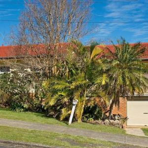 Foto Hotel: HIll Top Country Home!, Goonellabah