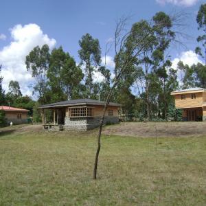 Фотографии отеля: Cabañas Huillimapu, Traitraico