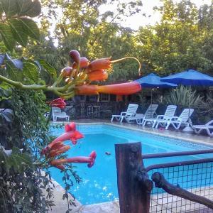 Hotellbilder: Apart Cabañas Oasis del Valle, Villa Cura Brochero
