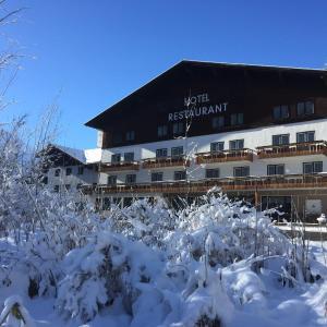 Φωτογραφίες: Hotel Styrolerhof, Steeg