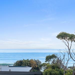 ホテル写真: Ocean View Treetops Retreat, Skenes Creek