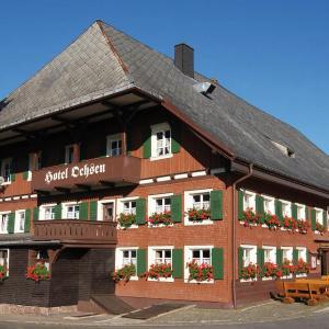 Hotelbilleder: Hotel Ochsen, Lenzkirch