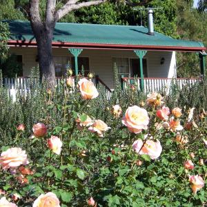 Hotelbilleder: Granite Gardens Cottages & Lake Retreat, Stanthorpe