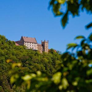 Hotelbilleder: Schloss Weitenburg, Starzach