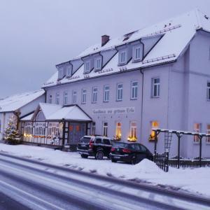 Hotel Pictures: Hotel & Landgasthaus Zur grünen Erle, Schleusingen