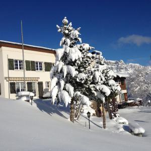 Hotel Pictures: Casa Fluretta, Flumserberg