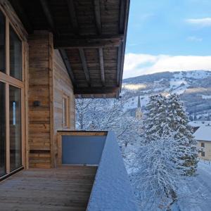 Hotel Pictures: Alpin Penthouse Hollersbach, Hollersbach im Pinzgau