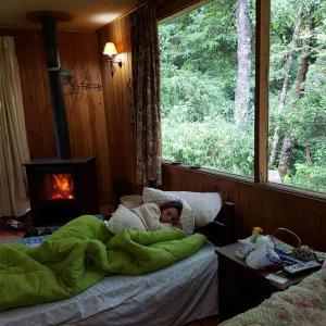 Hotel Pictures: Parcela Didita, Villarrica