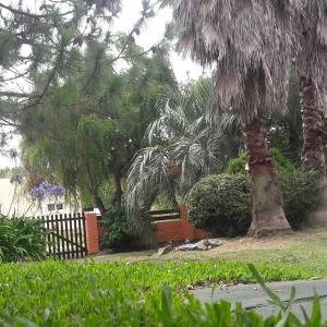 Hotelfoto's: Buena Onda, Punta del Este