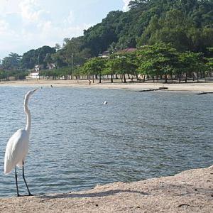 Hotel Pictures: Casa na praia de Paquetá, Paqueta