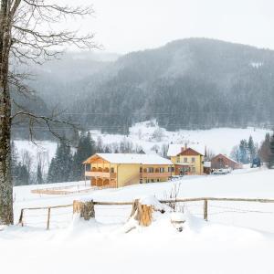 Foto Hotel: Gasthof Wachter, Gaal