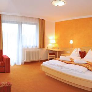 Fotografie hotelů: Bio-Hotel Herold, Ramsau am Dachstein