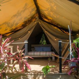 Hotel Pictures: Flor y Bambu, Playa Grande