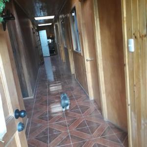Fotos do Hotel: Residencial lircay, Talca