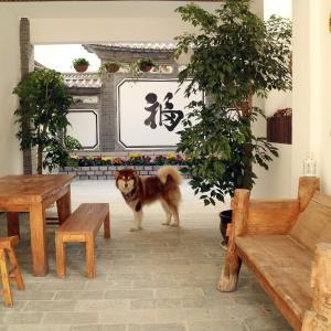 Hotellikuvia: Green Mud Corner Guest House, Dali