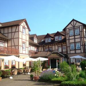 Hotelbilleder: Hotel Burg-Mühle, Gelnhausen