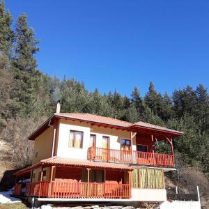 Fotos de l'hotel: Villa Chaushevi, Pletena