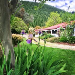 Hotellikuvia: Plantation Hill Homestead, Porepunkah