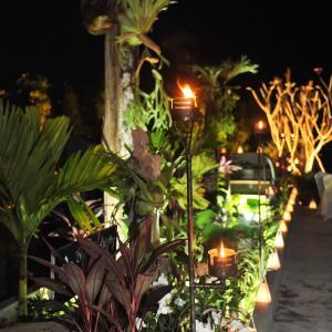 Foto Hotel: Botanic Artistry Boutique Hotel & Garden, Siem Reap