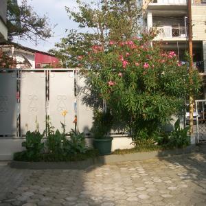 Φωτογραφίες: Nice House, Kobuleti