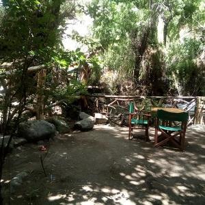 Fotos do Hotel: Cabaña el bosque, La Serena