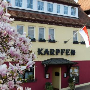 Hotelbilleder: Hotel Zum Karpfen, Obernburg am Main