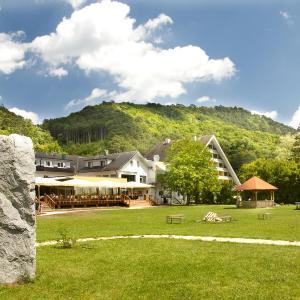 酒店图片: Hotel Krainerhütte, 巴登