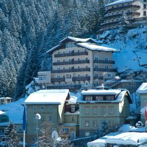 酒店图片: Alpenhof by AlpenTravel, 巴德加斯坦