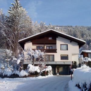 Hotellikuvia: Ferienwohnung Lisbeth Ambra, Hermagor