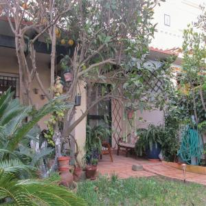 Hotel Pictures: Three-Bedroom Holiday Home in Chipiona, Chipiona