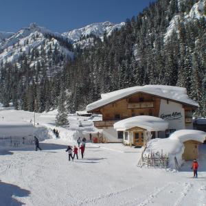 Hotel Pictures: Alpengasthof Gern Alm, Pertisau
